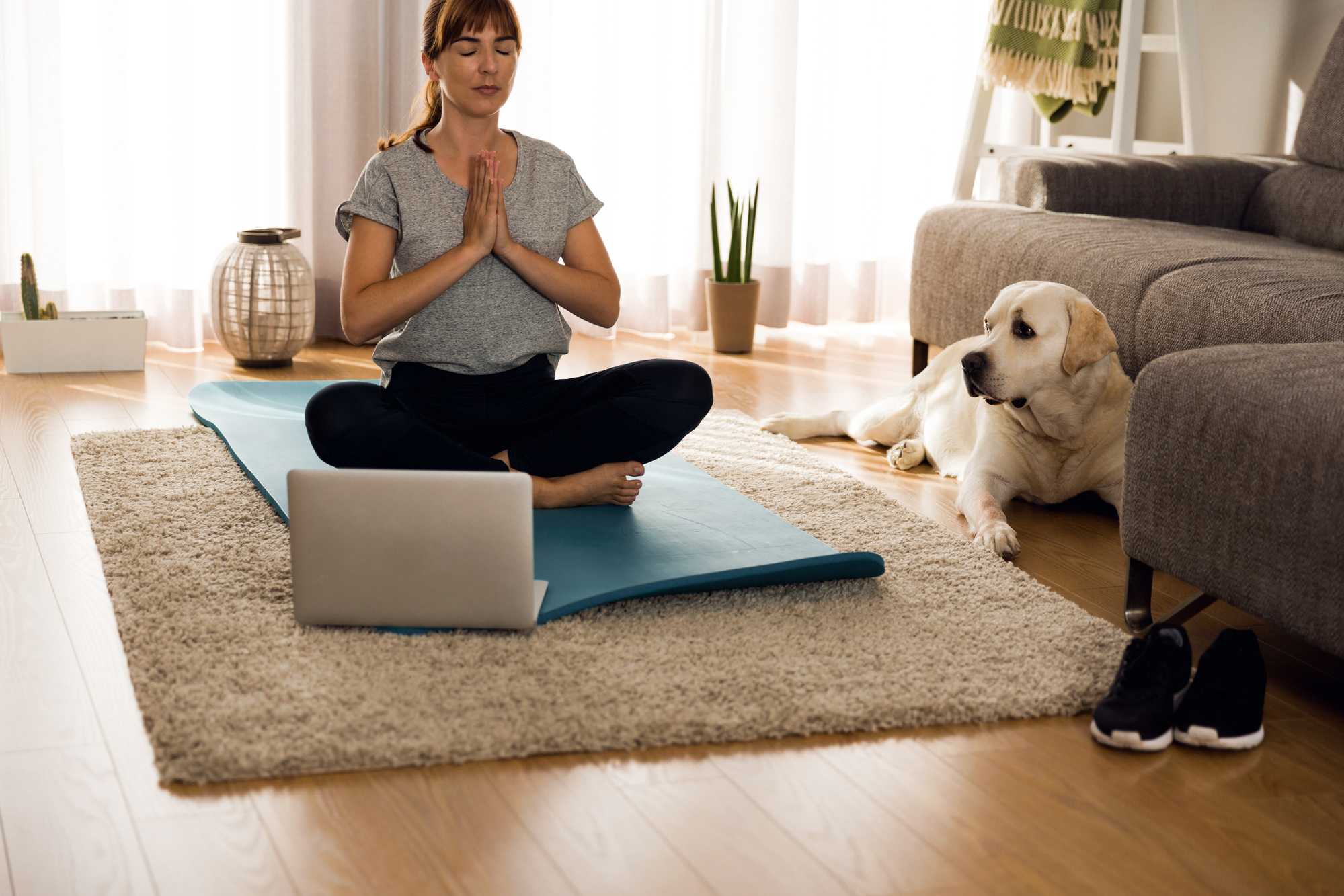 Best Yoga DVD for Weight Loss of 2019